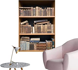 SeptSonne Wall Decorative Books Shelf Pictures Wall Art Painting,28