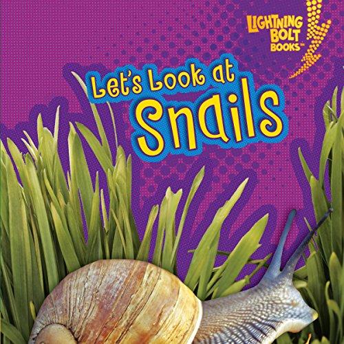 Let's Look at Snails copertina