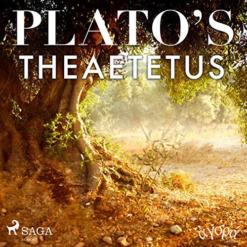 Plato's Theaetetus audiobook cover art