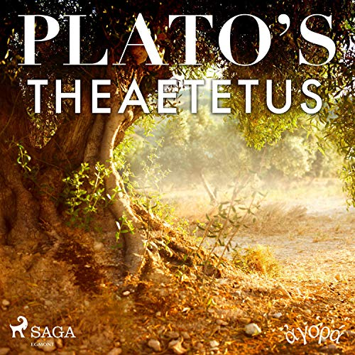 Plato's Theaetetus  By  cover art