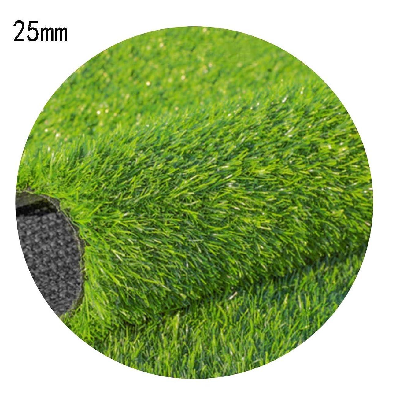 疑い略奪シャンプーXEWNEG 庭の人工芝カーペット、高さ25mm、暗号化された厚い緑の人工芝、屋外の結婚式のためのテラスの装飾 (Size : 2x6m)