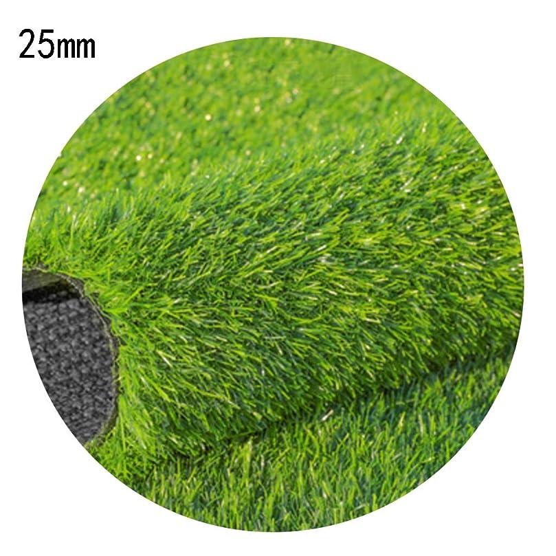 アボートミント辞書XEWNEG 庭の人工芝カーペット、高さ25mm、暗号化された厚い緑の人工芝、屋外の結婚式のためのテラスの装飾 (Size : 2x6m)