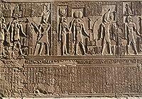 GooEoo 8 x 6.5フィート写真の背景古代エジプトの壁石彫刻装飾石象形文字エジプトの神々刻まれたSobek KOMオンボ島フィギュア子供キッズアート写真ビデオスタジオ