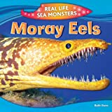 Moray Eels (Real Life Sea Monsters)