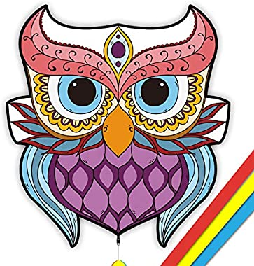 Mint's Colorful Life Owl Bird Kite for Kids & Adults, 30x28'' (Queen)