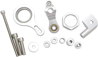 LLMXFC YZF R1 R6 2002-2017 2006-2017 Motorfiets Stuurinrichting Stabilisator dempermontagesteun Kit (Color : Silver support)