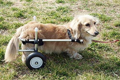 小型犬用2輪歩行器 車いす Dタイプ