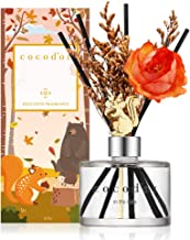 Cocod'or Chipmunk Diffuser (Seasonal Edition) / in The Cafe / 6.7oz / Reed Oil Diffuser, Room Fragrance, Home & Office Décor