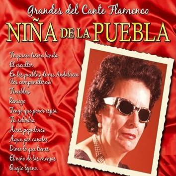 Grandes del Cante Flamenco