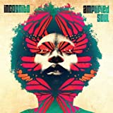 Songtexte von Incognito - Amplified Soul
