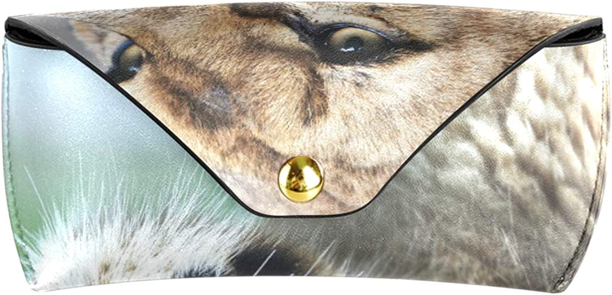 Portable Goggles Bag PU Leather Majestic Lioness Nature Sunglasses Case Eyeglasses Pouch Wallet Multiuse