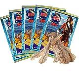 Großschuppen Eidechsenfisch - Original 5 Stück