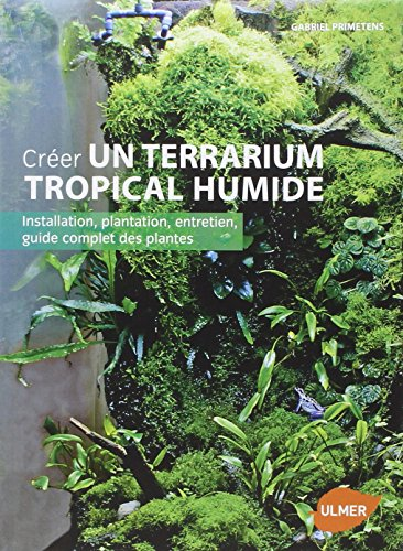 Créer un terrarium tropical humide