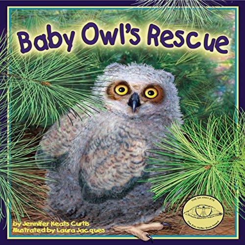 Baby Owl's Rescue copertina