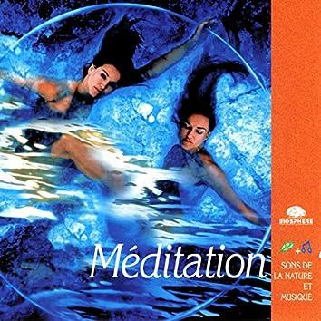 Meditation (Méditation)