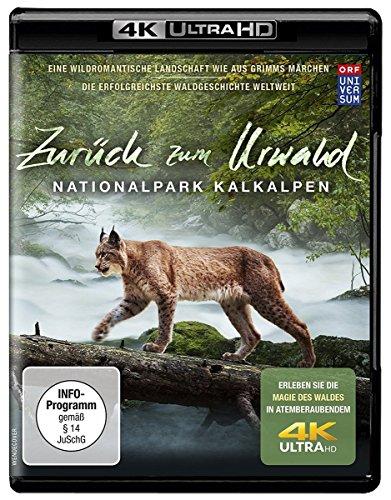 Zurück zum Urwald - Der Nationalpark Kalkalpen 4K (UHD Ultra HD Blu-ray)