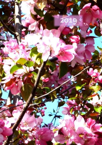 Kalender 2019 - DIN A5 - Kirschblüte: 1 Woche pro Doppelseite