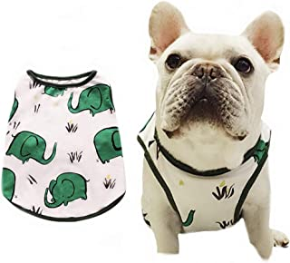 frenchie outfits