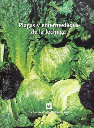 Plagasyenfermedadesdelalechuga (Patología Vegetal)