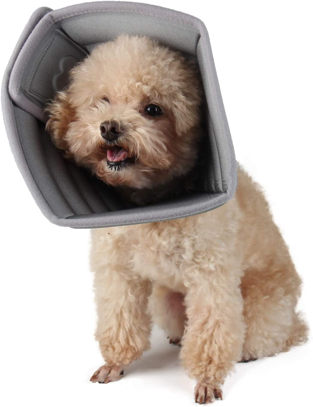 Luxury Etdane Dog Cat Cone After Tampa Mall Collar Pe Surgical Recovery Adjustable