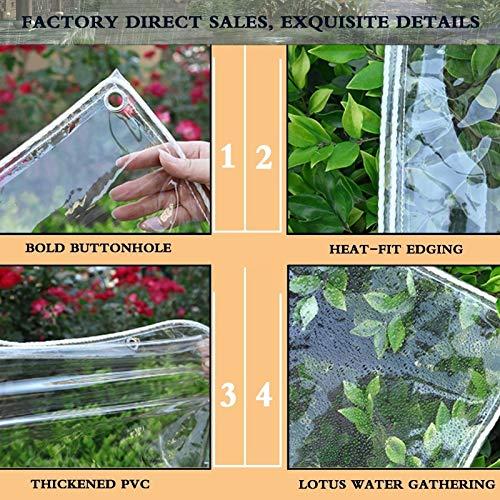 Toldo Impermeable, Ojal de Metal PVC Engrosado, Protección del Medio Ambiente for Jardín, Protección contra la Lluvia, Personalizable (Color : Clear, Size : 2.5x3m)