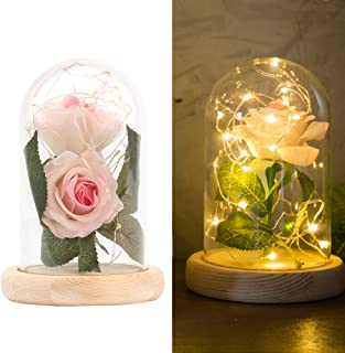 Enchanted Rose Lamp, Beauty and The Beast Rose in Glass Dome, 20 Led Light 2pcs Pink Silk Rose Flower on a Wood Base, Romantic Forever Gift for Birthday Party Wedding Anniversary Valentine's Day Decor