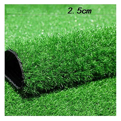 GHHZZQ Premium Kunstrasen Kunststoffrasen Rasenteppich for Garten Balkone Wasserdurchlässig rutschfest,Höhe: 2.5cmn (Color : B, Size : 2x5m)