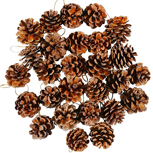 Coobey 27 Pieces Mini Pine Cones Christmas PineCones Natural Hanging Ornament 3-4cm Pine Cones Pendant With String for Christmas Gift Tag Decoration