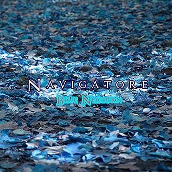 Navigatore