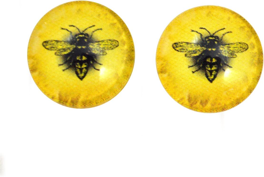 Bright Yellow Honey Bee Cabochons 6mm to 40mm Jewelry Making Art Dolls Bug Insect Taxidermy Sculptures  Eyeball Flatback Domed Viking