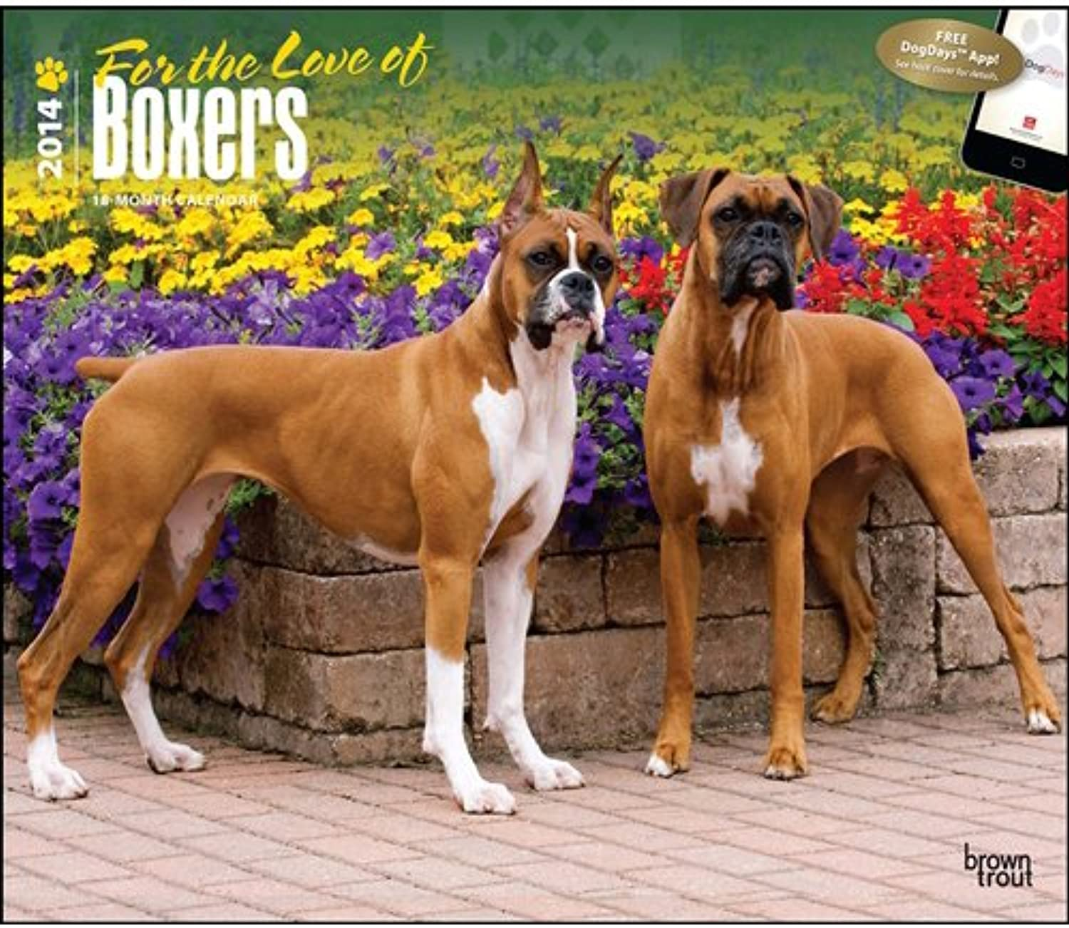 For the Love of Boxers Deluxe Kalender 2014 B00BQWFJHA | Trendy