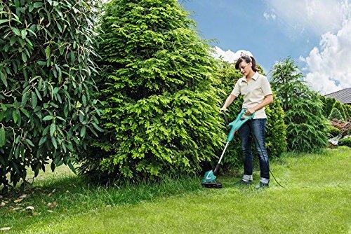 Bosch Home and Garden 06008A5400