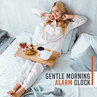 Best walk easy alarm Reviews