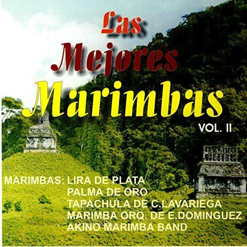 Marimba Tapachula De Carlos F. Lavariega, Marimba Palma De Oro, Marimba Lira De Plata, Marimba Orq. De Ernesto Dominguez, Akino Marimba Band