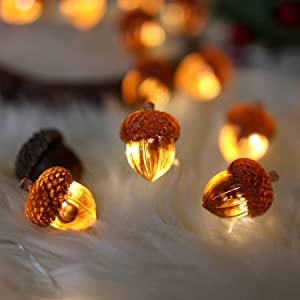 Decorative Fairy Acorn String Lights Thanksgiving Decoration Autumn Garland Cute Novelty Lights 30 LEDs 10 ft Battery Operated for Bedroom Wedding Birthday Harvest Decor