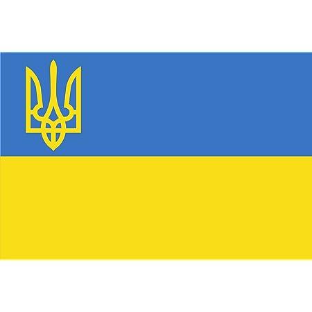 Michael Rene Pflüger Barmstedt 8 4 X 5 4 Cm Autoaufkleber Fahne Ukraine Mit Wappen Flaggen Sticker Aufkleber Fürs Auto Motorrad Handy Laptop Auto
