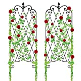 "Amagabeli Garden Trellis GTP002 47"" x 16"" Rustproof Iron Plant Trellis Vegetables Pati..."