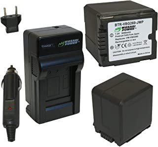 Wasabi Power Battery (2-Pack) and Charger for Panasonic VW-VBG260