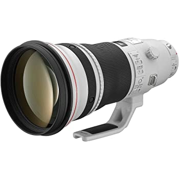 Canon EF 400mm f/2.8L IS USM II Super Telephoto Lens for Canon EOS SLR Cameras (Renewed)