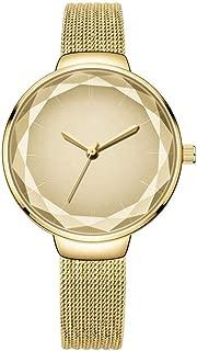 PANFU-AU Vintage European And American Fashion Small Fresh Watch Womens Analogue Classic Quartz Watch With Stainless Steel Strap Ultra Thin Stainless Steel Mesh Band Waterproof Quartz Women's Wrist Wa