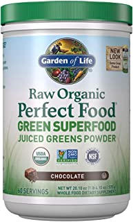 Garden of Life Raw Organic Perfect Food Green Superfood Juiced Greens Powder - Chocolate, 60 Servings, Non-GMO, Gluten Fre...