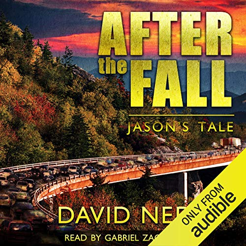 Couverture de After the Fall