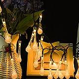 LEDGLE Luces de Hadas Solares, 20ft 30 LED Luces de la Gota del Agua del Luces...