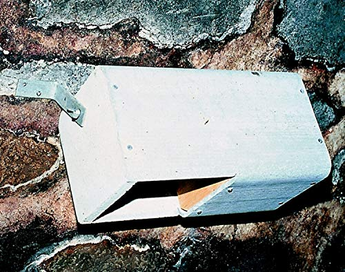 Naturschutzprodukt Wasseramsel Bachstelze Nistkasten Nisthöhle Wasseramsel- und Bachstelzennistkasten Typ Nr. 19 räubersicher Höhe 19 cm