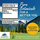 Garlic Pills - Kosher Vegan Capsules with 500mg Organic Garlic Allium Sativum Supplement #3