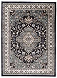 Grande Tapis d'Orient - NOIR ANTHRACITE - Motif Persan Traditionnel et Oriental - Tapis de Salon Ultra Doux - ' AYLA ' - 200_x_300_cm