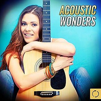 Acoustic Wonders