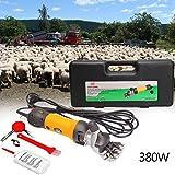 Iglobalbuy 380W elektrische Schafscheremachine Schafschere Set für Schafe Fellpflege