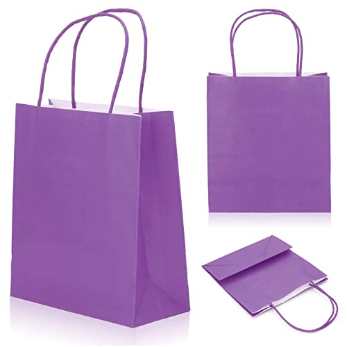 d89be0f3f6 MultiWare Gift Bag Paper Carrier Bags Paper 10pcs Purple