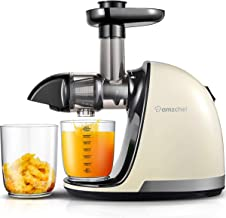 Amzchef Masticating Juicer